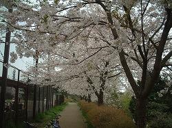 矢シ塚公園